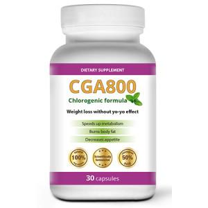 cga800